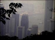 Heart of qin in Hong Kong